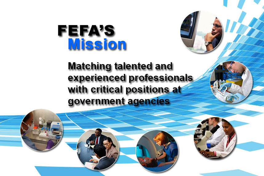 FEFA's Mission:  matching professionals with critical government positions